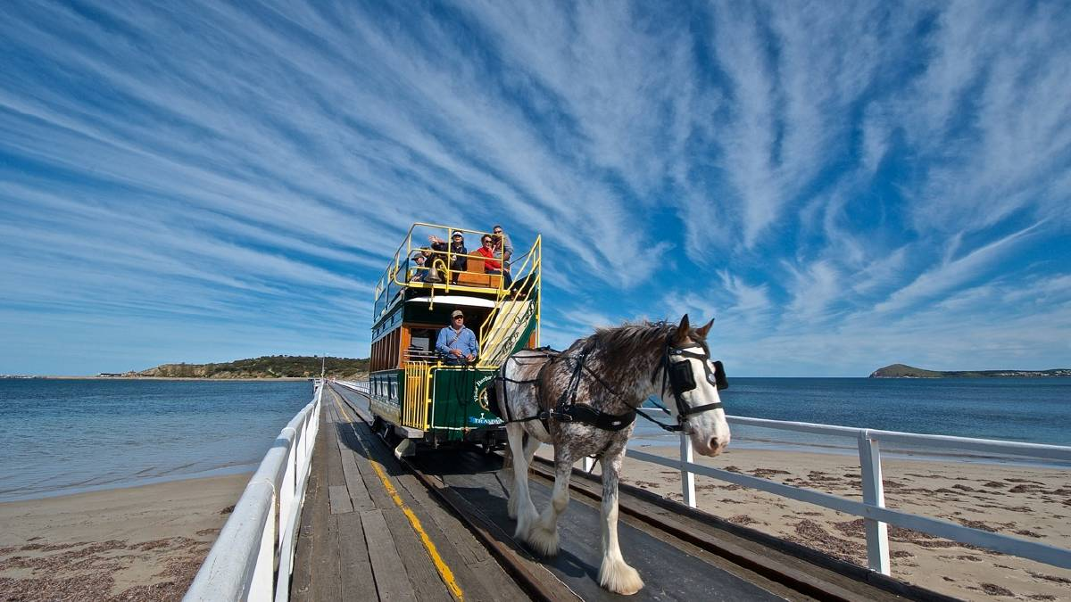 Top 10 Best Things to Do in Victor Harbor
