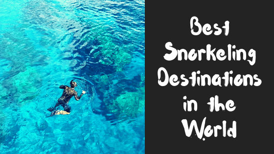 Best Snorkeling Spots Around The World