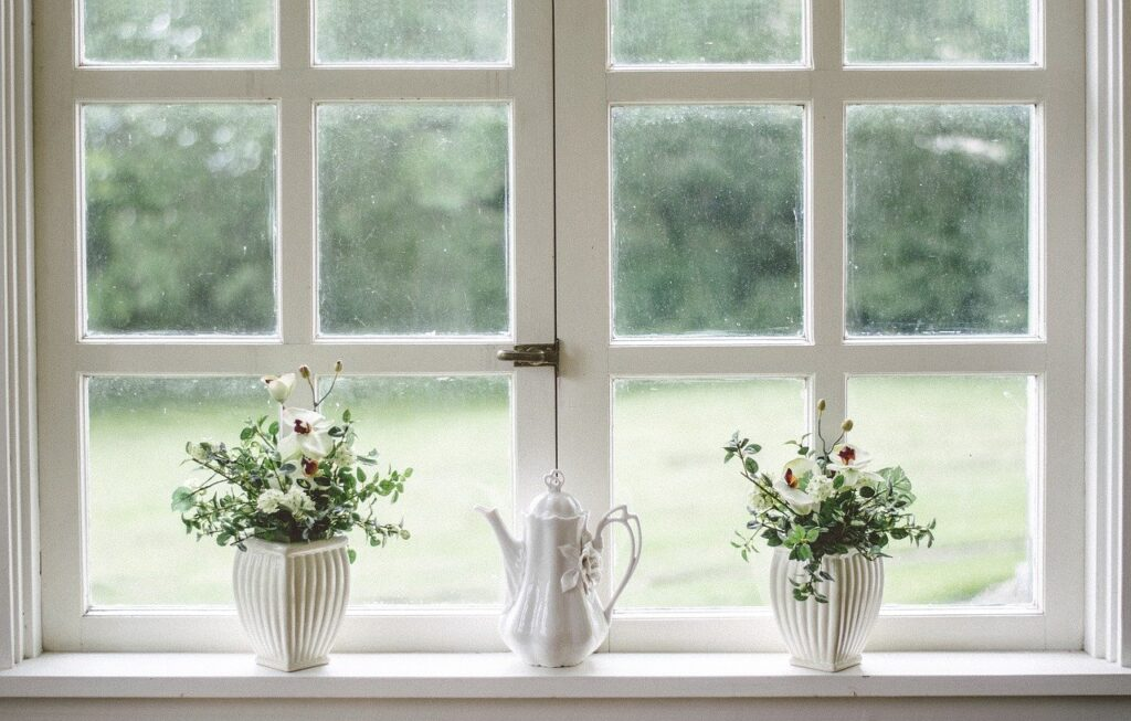 white window, two home plants, and a teapot